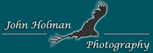 John Holman Photography, Tucson Arizona